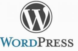 使用 WordPress 自定义字段功能为编辑文章添加自定义按钮